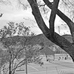 santafe tennis reviews